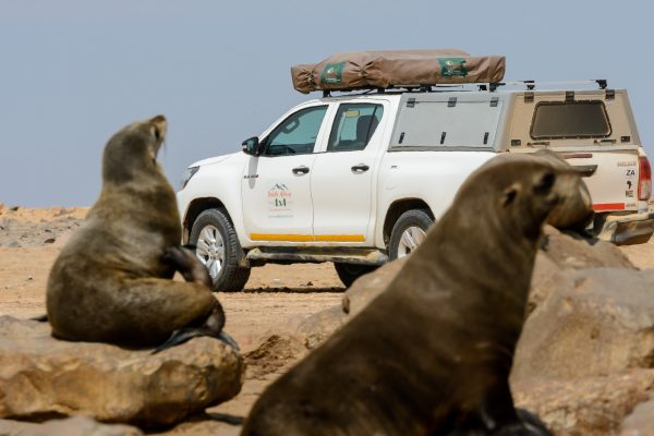 Namibia - Cape Cross